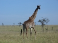 kathy-africa-3-185